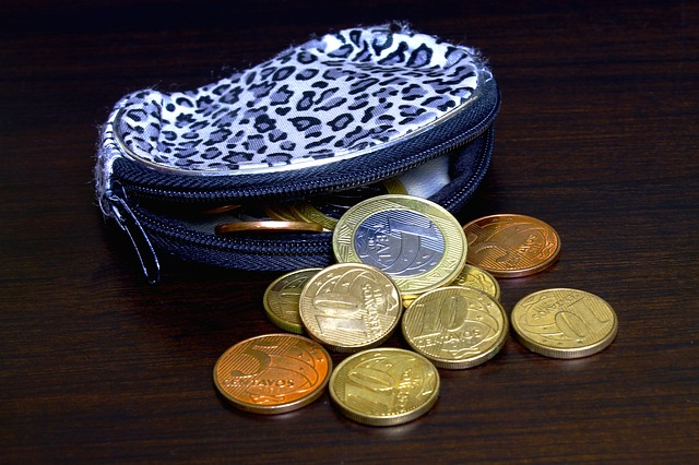 dámská textilní peněženka s mincemi